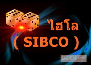 ไฮโล ( SIBCO )2