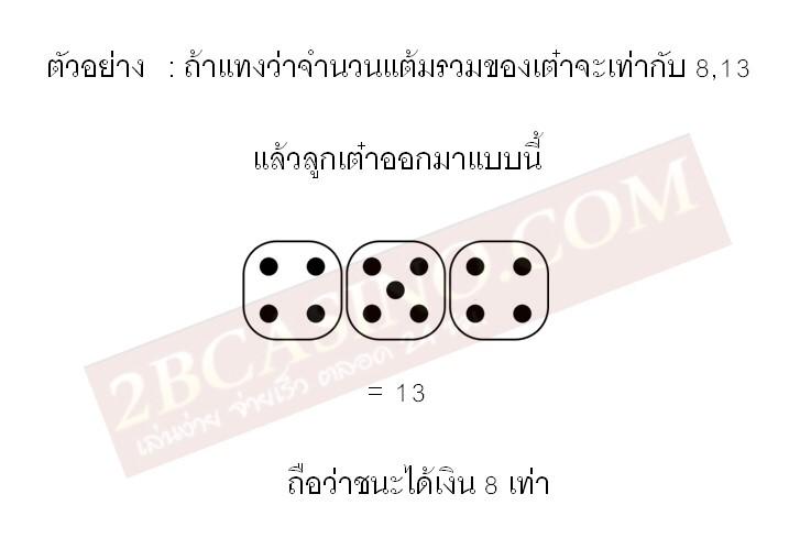 การแทงจำนวนแต้มรวม 8,13