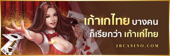 เก้าเกไทย-บางคนก็เรียกว่า-เก้าเก่ไทย